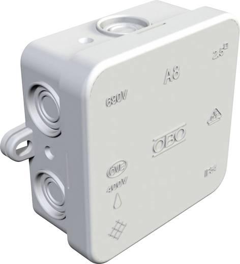Abzweigkasten (L x B x H) 80 x 80 x 36 mm OBO Bettermann 352800000 Licht-Grau IP54