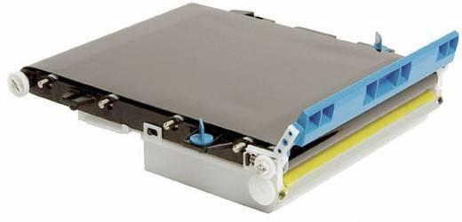 OKI Transferband Transfer Belt C610 C711 44341902 Original 60000 Seiten