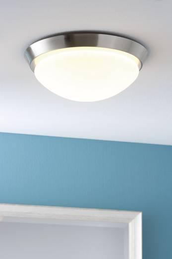 Bad-Deckenleuchte Halogen, Energiesparlampe E27 60 W Paulmann Ixa 70300 Eisen (gebürstet), Opal