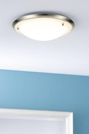 Bad-Deckenleuchte Halogen, Energiesparlampe E27 60 W Paulmann Arctus 70344 Eisen (gebürstet), Opak