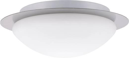 Bad-Deckenleuchte Halogen, Energiesparlampe E27 60 W Paulmann Vega 70346 Eisen (gebürstet)