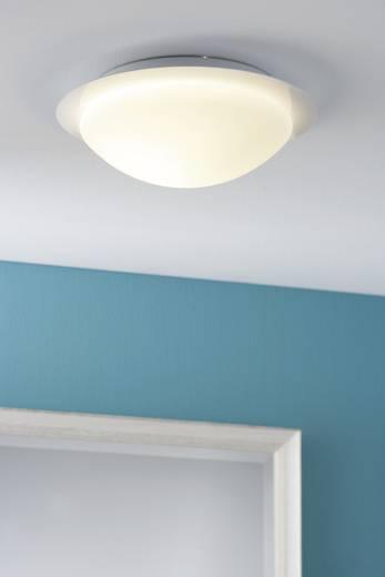 Bad-Deckenleuchte Halogen, Energiesparlampe E27 60 W Paulmann Vega 70347 Weiß