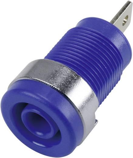 Sicherheits-Laborbuchse Buchse, Einbau vertikal Stift-Ø: 4 mm Blau 1 St.