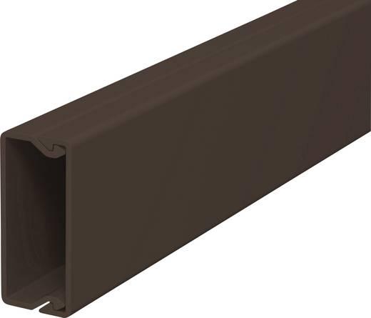 Kabelkanal (L x B x H) 2000 x 15 x 40 mm OBO Bettermann 6189490 1 St. Braun