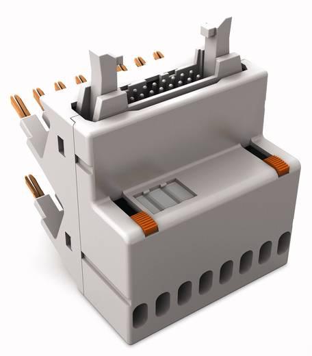 JUMPFLEX®-Adapter; mit 16-poligem Flachbandkabel-Steckverbinder gemäß DIN 41651; analog WAGO 857-980 1 St.