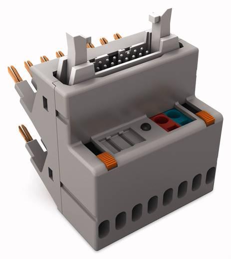 JUMPFLEX®-Adapter; mit 14-poligem Flachbandkabel-Steckverbinder gemäß DIN 41651; Ausgang plusschaltend WAGO 857-982 1 S