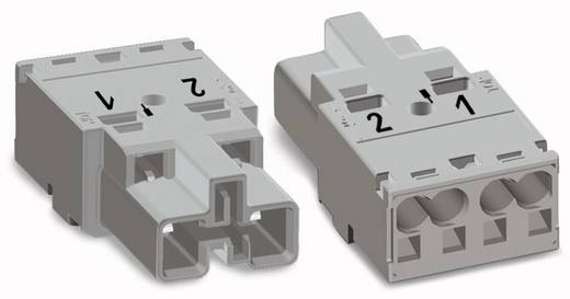 Netz-Steckverbinder Serie (Netzsteckverbinder) WINSTA MIDI Stecker, gerade Gesamtpolzahl: 2 25 A Hellgrün WAGO 100 St.