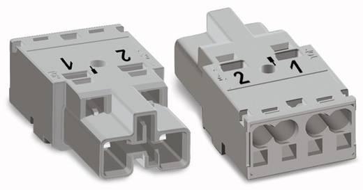 Netz-Steckverbinder WINSTA MIDI Serie (Netzsteckverbinder) WINSTA MIDI Stecker, gerade Gesamtpolzahl: 2 25 A Grau WAGO