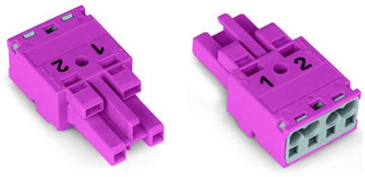 Netz-Steckverbinder Serie (Netzsteckverbinder) WINSTA MIDI Buchse, gerade Gesamtpolzahl: 2 25 A Schwarz WAGO 100 St.