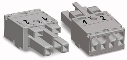 Netz-Steckverbinder Serie (Netzsteckverbinder) WINSTA MIDI Buchse, gerade Gesamtpolzahl: 2 25 A Hellgrün WAGO 100 St.