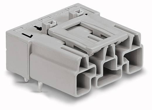 Netz-Steckverbinder Serie (Netzsteckverbinder) WINSTA MIDI Stecker, Einbau horizontal Gesamtpolzahl: 3 25 A Grau WAGO 100 St.