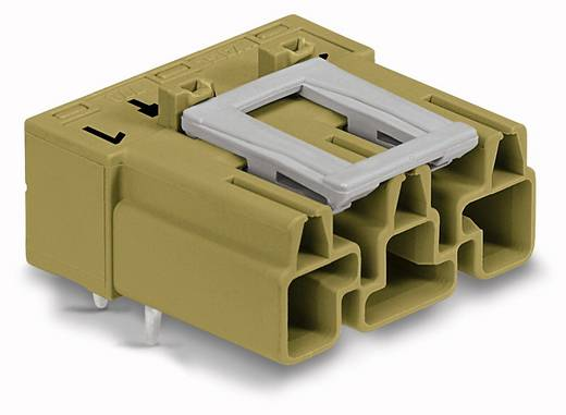 Netz-Steckverbinder Serie (Netzsteckverbinder) WINSTA MIDI Stecker, Einbau horizontal Gesamtpolzahl: 3 25 A Hellgrün WAGO 100 St.