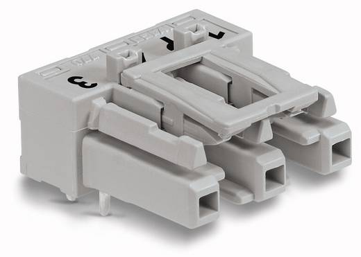 Netz-Steckverbinder Serie (Netzsteckverbinder) WINSTA MIDI Buchse, Einbau horizontal Gesamtpolzahl: 3 25 A Grau WAGO 1