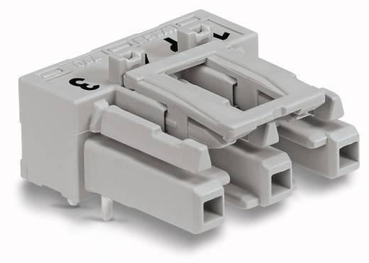 Netz-Steckverbinder Serie (Netzsteckverbinder) WINSTA MIDI Buchse, Einbau horizontal Gesamtpolzahl: 3 25 A Grau WAGO 77