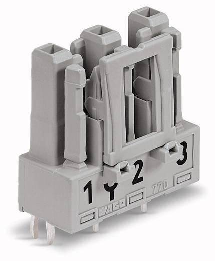 Netz-Steckverbinder Serie (Netzsteckverbinder) WINSTA MIDI Buchse, Einbau vertikal Gesamtpolzahl: 3 25 A Grau WAGO 770-