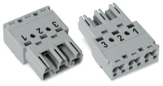 Netz-Steckverbinder WINSTA MIDI Serie (Netzsteckverbinder) WINSTA MIDI Stecker, gerade Gesamtpolzahl: 3 25 A Hellgrün WA