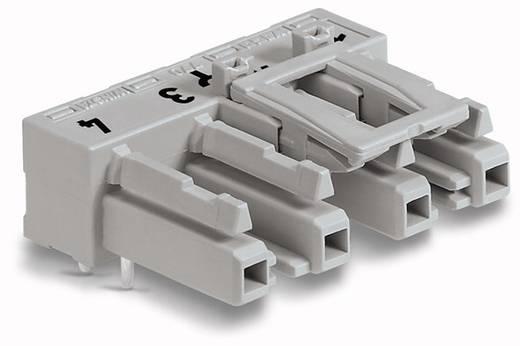 Netz-Steckverbinder Serie (Netzsteckverbinder) WINSTA MIDI Buchse, Einbau horizontal Gesamtpolzahl: 4 25 A Grau WAGO 77