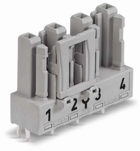 Netz-Steckverbinder Serie (Netzsteckverbinder) WINSTA MIDI Buchse, Einbau vertikal Gesamtpolzahl: 4 25 A Grau WAGO 50