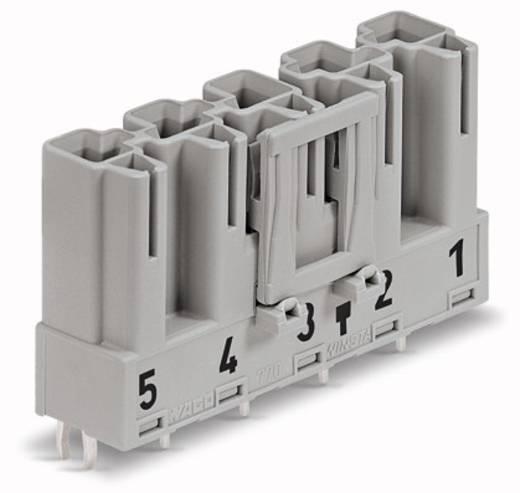 Netz-Steckverbinder Serie (Netzsteckverbinder) WINSTA MIDI Stecker, Einbau vertikal Gesamtpolzahl: 5 25 A Grau WAGO 50 St.