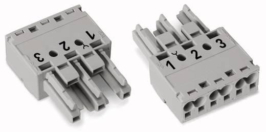 Netz-Steckverbinder Serie (Netzsteckverbinder) WINSTA MIDI Buchse, gerade Gesamtpolzahl: 3 25 A Grau WAGO 100 St.