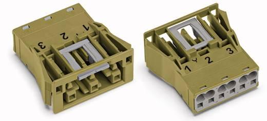 Netz-Steckverbinder Serie (Netzsteckverbinder) WINSTA MIDI Buchse, gerade Gesamtpolzahl: 3 25 A Hellgrün WAGO 100 St.