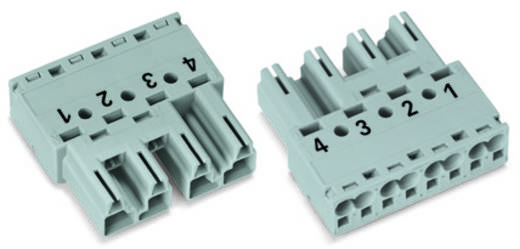 Netz-Steckverbinder Serie (Netzsteckverbinder) WINSTA MIDI Stecker, gerade Gesamtpolzahl: 4 25 A Hellgrün WAGO 50 St.