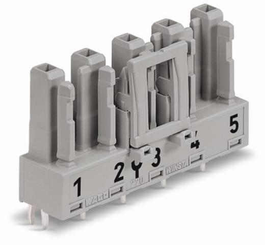 Netz-Steckverbinder WINSTA MIDI Serie (Netzsteckverbinder) WINSTA MIDI Buchse, Einbau vertikal Gesamtpolzahl: 5 25 A Gra