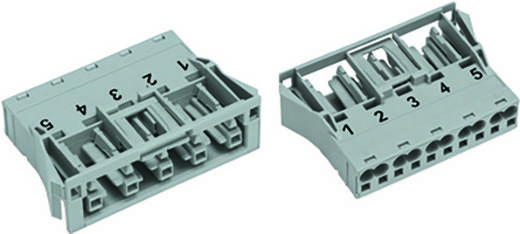 Netz-Steckverbinder Serie (Netzsteckverbinder) WINSTA MIDI Buchse, gerade Gesamtpolzahl: 5 25 A Weiß WAGO 100 St.