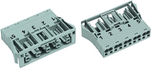 Netz-Steckverbinder WINSTA MIDI Serie (Netzsteckverbinder) WINSTA MIDI Buchse, gerade Gesamtpolzahl: 5 25 A Pink WAGO 1