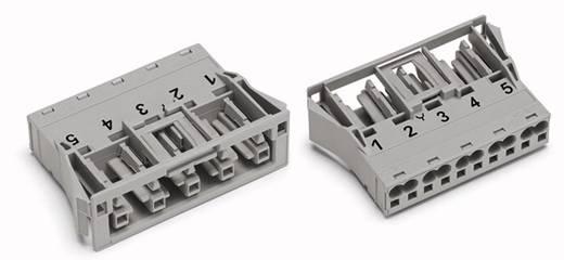 Netz-Steckverbinder Serie (Netzsteckverbinder) WINSTA MIDI Buchse, gerade Gesamtpolzahl: 5 25 A Grau WAGO 770-745 100 S