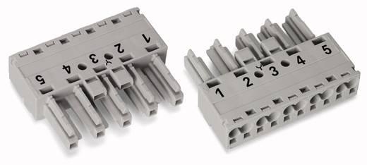 Netz-Steckverbinder Serie (Netzsteckverbinder) WINSTA MIDI Buchse, gerade Gesamtpolzahl: 5 25 A Grau WAGO 50 St.