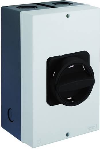 Lasttrennschalter 100 A 1 x 90 ° Schwarz Sälzer H410-41300-730N1 1 St.