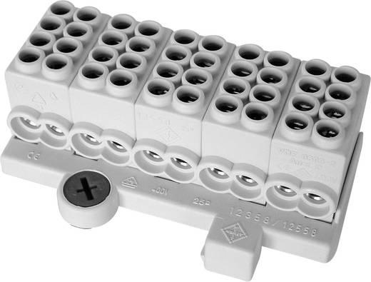 Hauptleitungsabzweigklemme 5polig 25 mm² Leiter-Typ = L FTG Friedrich Göhringer 5309