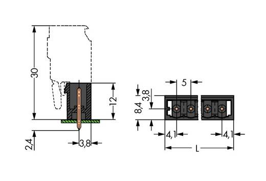 Stiftgehäuse-Platine 231 Polzahl Gesamt 12 WAGO 231-142/001-000/105-604 Rastermaß: 5 mm 100 St.