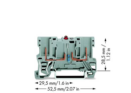 Basisklemme 5 mm Zugfeder Belegung: L Grau WAGO 769-229/281-413 100 St.