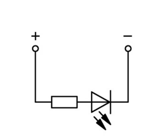 Basisklemme 5 mm Zugfeder Belegung: L Grau WAGO 769-239/281-434 100 St.