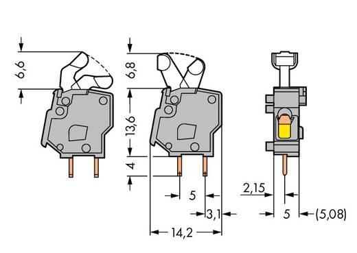 Federkraftklemmblock 2.50 mm² Polzahl 1 257-746 WAGO Orange 500 St.