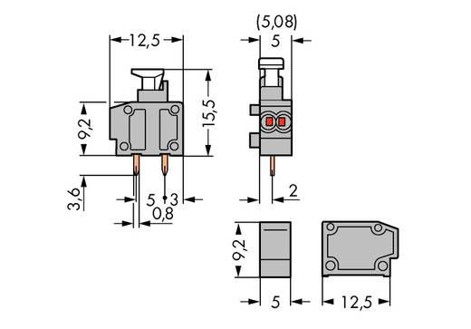 WAGO Federkraftklemmblock 0.50 mm² Polzahl 1 Grau 800 St.