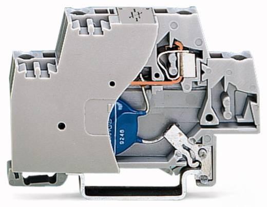 Einzelklemme 10 mm Zugfeder Belegung: L Grau WAGO 280-502/281-587 50 St.