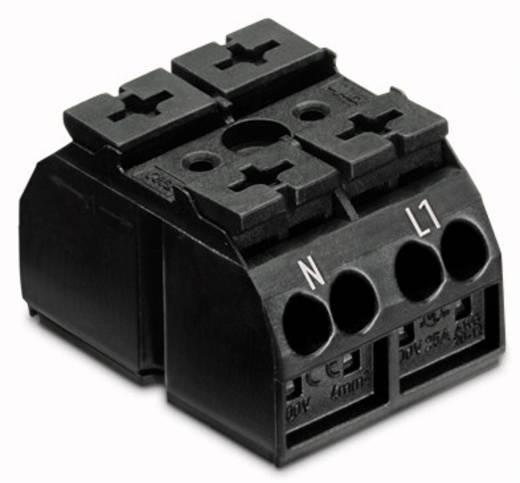 Geräteanschlussklemme Federklemme Schwarz WAGO 862-2532 500 St.