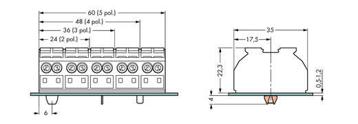 Geräteanschlussklemme Federklemme Schwarz WAGO 862-2504 200 St.