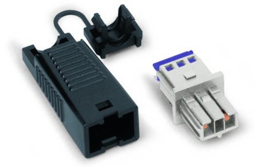 Netz-Steckverbinder Serie (Netzsteckverbinder) WINSTA MINI Buchse, gerade Gesamtpolzahl: 2 3 A Lichtgrau WAGO 893-1022