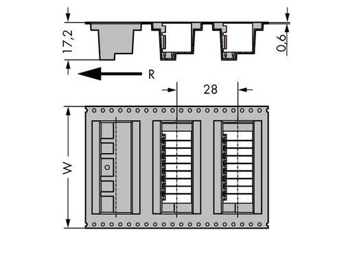 WAGO 713-1426/105-000/997-406 Stiftleiste (Standard) 1735 Polzahl Gesamt 12 Rastermaß: 3.50 mm 120 St.