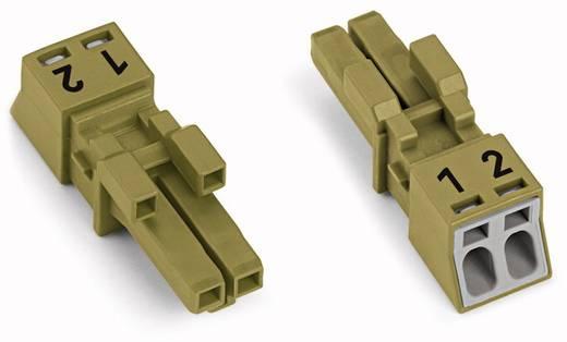 Netz-Steckverbinder Serie (Netzsteckverbinder) WINSTA MINI Buchse, gerade Gesamtpolzahl: 2 16 A Hellgrün WAGO 890-262 5