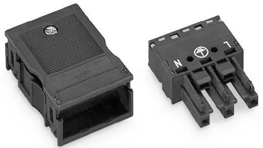 Netz-Steckverbinder Serie (Netzsteckverbinder) WINSTA MIDI Buchse, gerade Gesamtpolzahl: 3 25 A Weiß WAGO 770-123 25 St