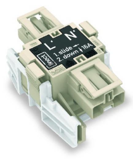 Netz-Adapter Netz-Stecker - Netz-Buchse Gesamtpolzahl: 2 Dunkel-Grau WAGO 25 St.