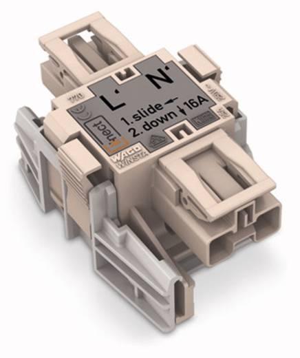 Netz-Adapter Netz-Stecker - Netz-Buchse Gesamtpolzahl: 2 Dunkel-Grau WAGO 770-7502 25 St.