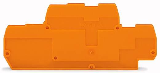 Abschluss- und Zwischenplatte 870-574 WAGO Inhalt: 100 St.