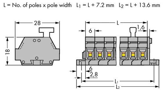 Klemmenleiste 6 mm Zugfeder Belegung: L Grau WAGO 261-425/331-000 50 St.