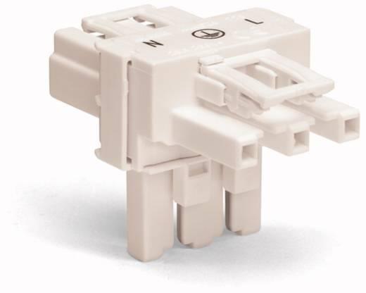 Netz-T-Verteiler Netz-Stecker - Netz-Buchse, Netz-Buchse Gesamtpolzahl: 3 Weiß WAGO 50 St.
